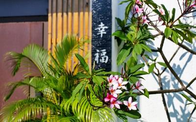 聖都Villa照片: IMG_0147