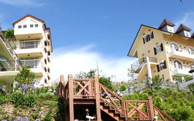 清境民宿 - 「清境白雲渡假山莊」主要圖片