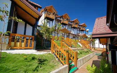 清境民宿 - 「雲海景觀渡假山莊」主要圖片