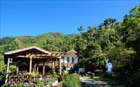 「星光森林民宿」主要建物圖片