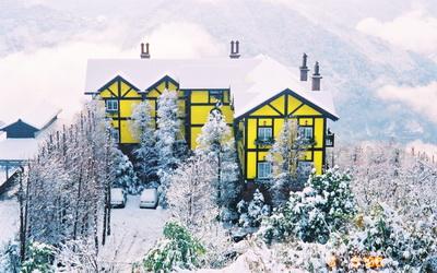 清境普羅旺斯玫瑰莊園照片: 外觀