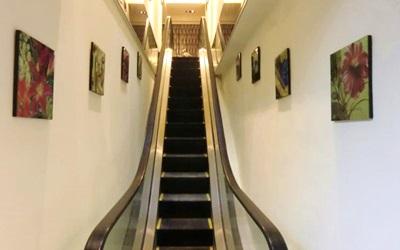 意芙旅店照片: 電扶梯