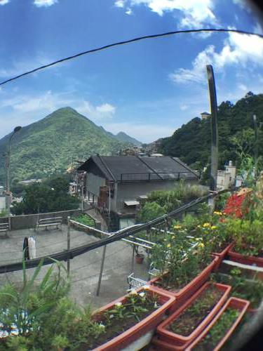 林園村莊民宿照片: 景觀