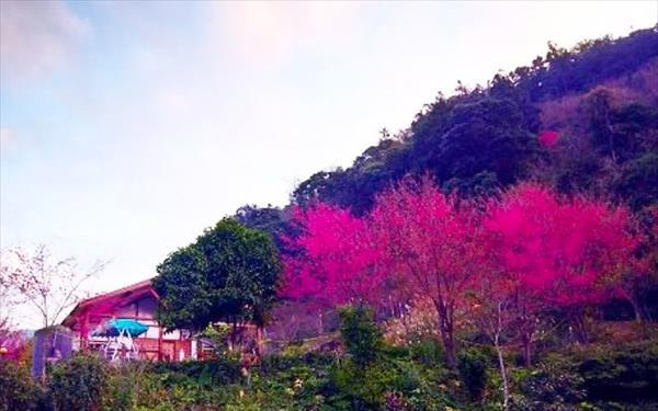 幸福小鎮溫泉民宿照片: 412244_15061709400029735601