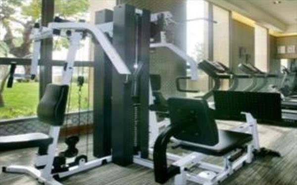 家新大飯店照片: 健身房