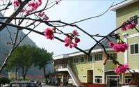「埔里箱根溫泉生活館」主要建物圖片