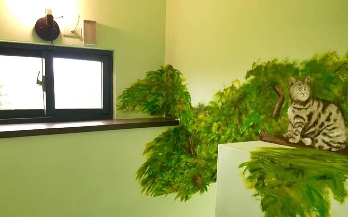 禾田綠野民宿照片: 樓梯