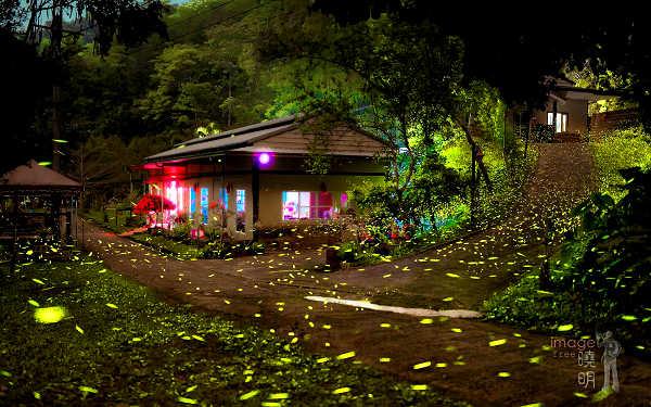 苗栗民宿「岩川森林民宿莊園餐廳」環境照片