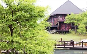 「汎水淩山花園手感民宿」主要建物圖片