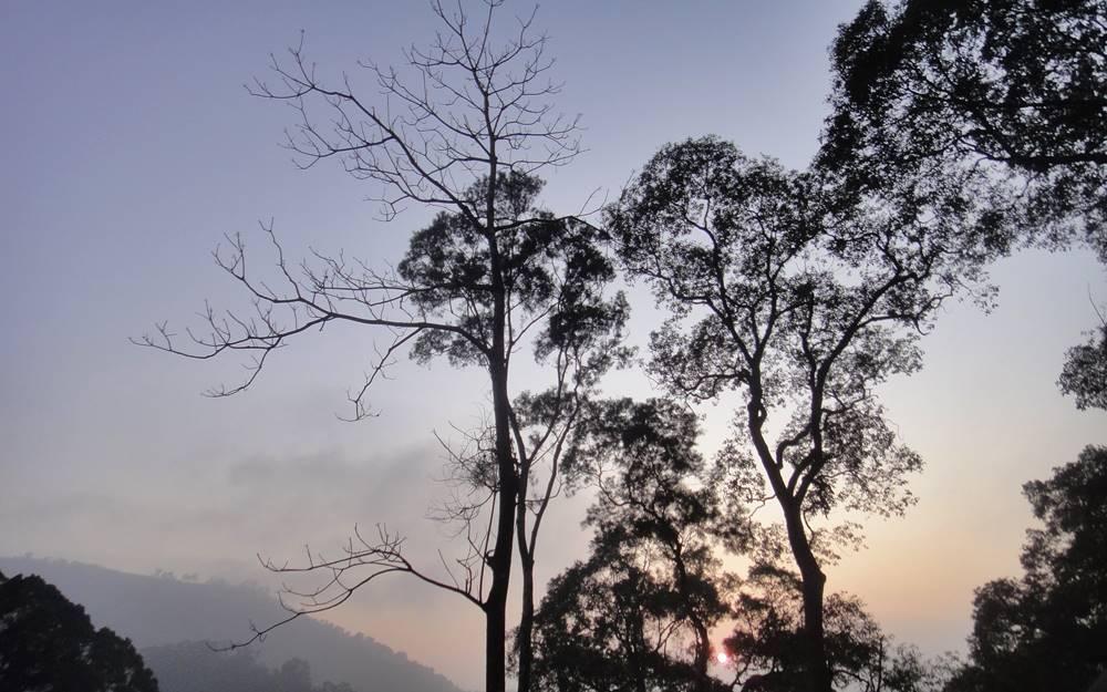 苗栗民宿「石濤園」環境照片