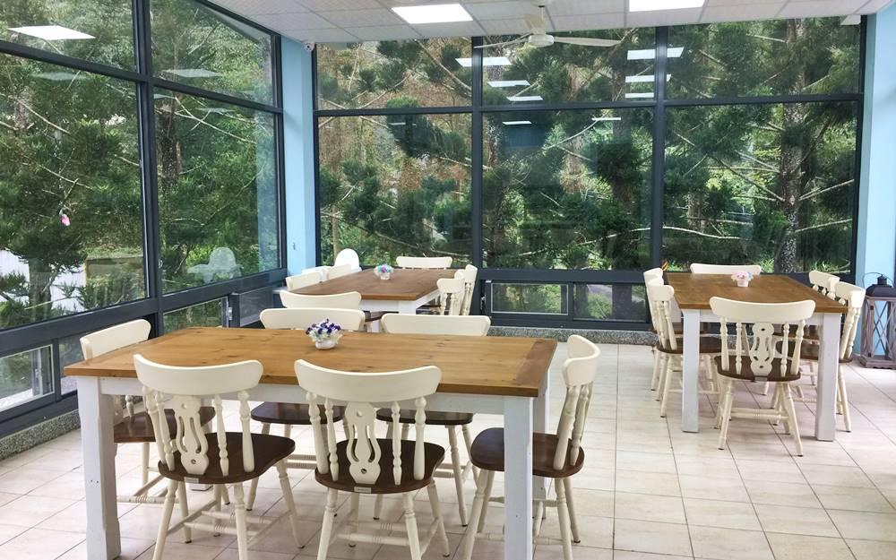 南庄民宿「21杉林別墅」環境照片
