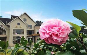 「晶園休閒渡假村」主要建物圖片