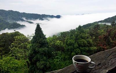 雲洞山莊照片: 7
