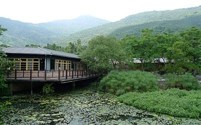 欣綠農園照片: CR=「沉睡的森林」