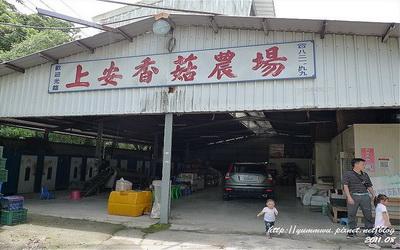 上安香菇教育農場