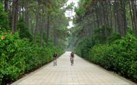 「中山紀念林」主要建物圖片
