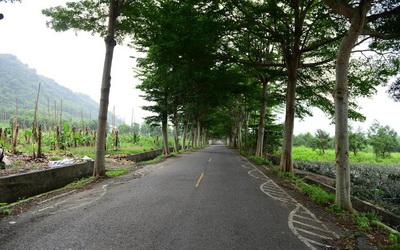 龍田生態村