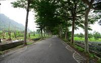 「龍田生態村」主要建物圖片