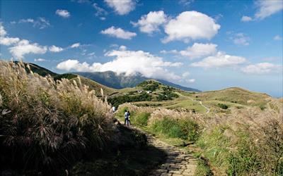 看更多「陽明山國家公園」資料