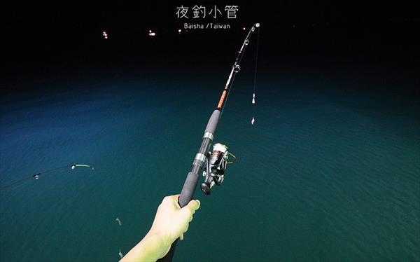 澎湖夜釣小管