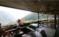 鄰近桐花祭美食「山行玫瑰」