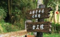 鄰近桐花祭景點「山塘背登山步道」