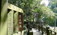 鄰近桐花祭景點「蓬萊溪護魚步道」