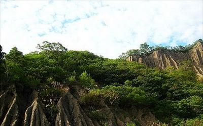 利吉惡地照片: CR=「沈睡的森林」BLOG
