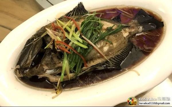 三隻魚照片: CR=「KenAlice0110」BLOG