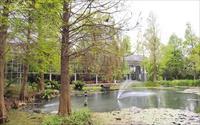 「菁芳園」主要建物圖片