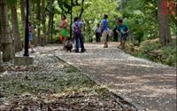 「荷苞山桐花公園」主要建物圖片