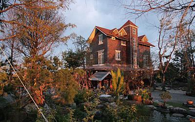 心嚮往的夢中屋,享受會呼吸的房子及巨木迴廊下悠閒的咖啡香