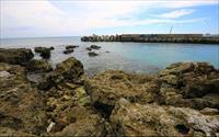 香蕉灣生態保護區